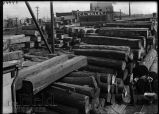 Pile of Mahogany, Willey's Lumber Company.