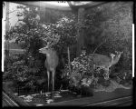 Summer. Four Seasons of the Deer diorama or group.