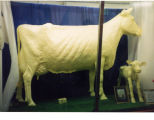 Butter Cow, 1992