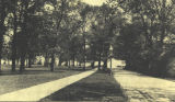 Street View by Ferry Hall,  1890s