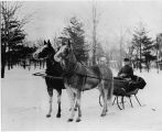 William Holdridge and sleigh
