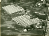 Aerial photograph of the greenhouses that used to be in Park Ridge on Northwest Highway taken...