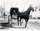 Dr. Louise Klehm in a Horse Drawn Buggy Photograph, 1910s