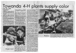 Newspaper article titled: Towanda 4-H Plants Supply Color