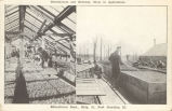 Greenhouses and Hotbeds, Class in Agriculture, Educational Dept., Bldg. 81, Fort Sheridan, Ill.